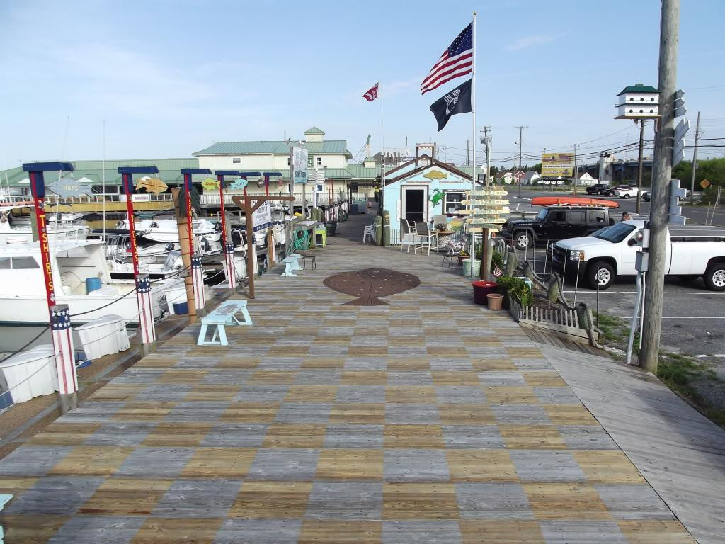Home no bones bait and tackle for Wildwood nj fishing charters